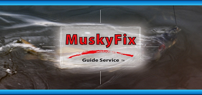 Musky Fix Illinois fishing guide on the fox chain of lakes